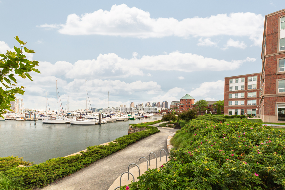 Harbor View At The Navy Yard - Pathway of the Apartment and Outside View